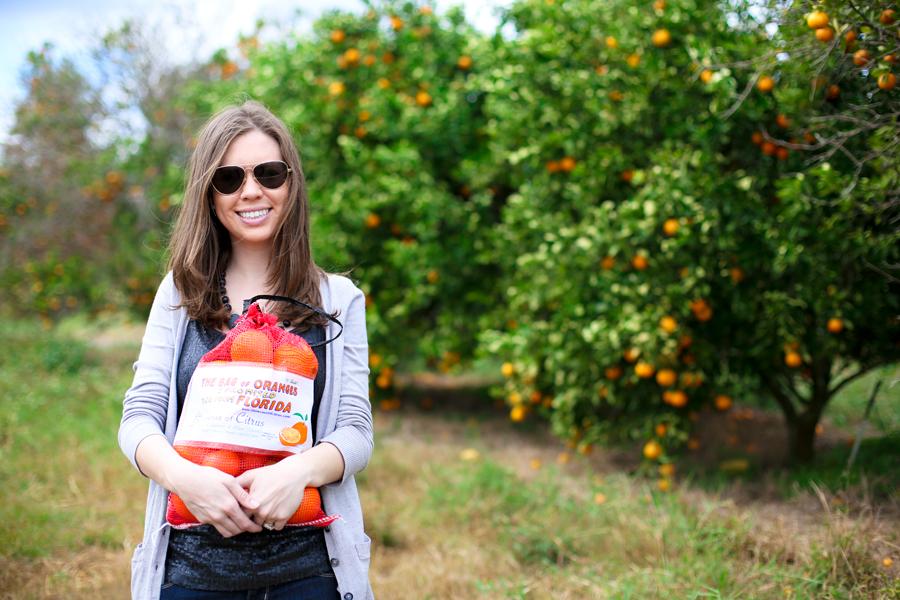 U-Pick Oranges